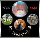 It's Wishcraft Silver award
