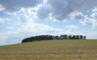 Bataille de Bautzen