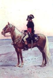Bonaparte dans le désert d'Egypte