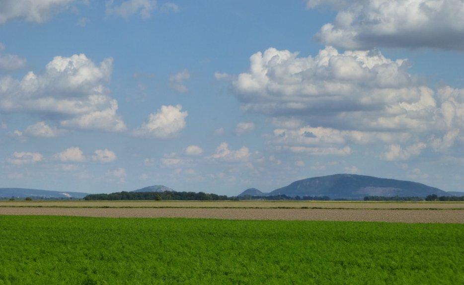 La plaine de Marchfeld