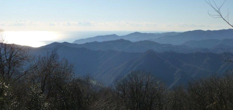 Vue depuis le sommet du Monte Negino